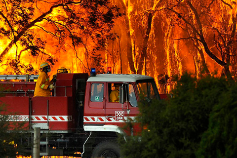 Tile image: bushfire protection