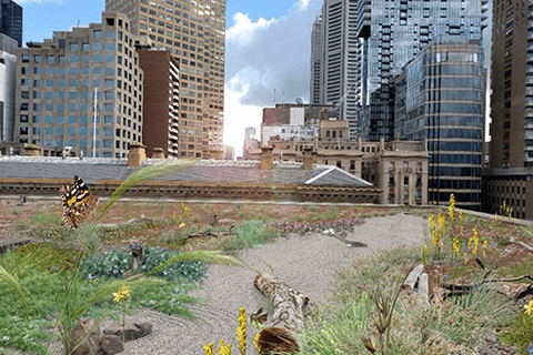 Artist impression of proposed rooftop garden at 1 Treasury Place, Melbourne. Courtesy of City of Melbourne