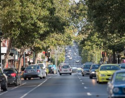 Image taken from street level which showcases Pakington Street in Geelong.Cars can be seen driving through the township. Green leafy trees fill the skyline.