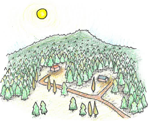 Drawing showing in forested area to show the bushfire hazard
